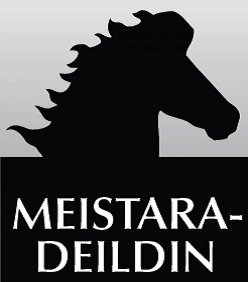 Myndaniðurstaða fyrir meistaradeild logo
